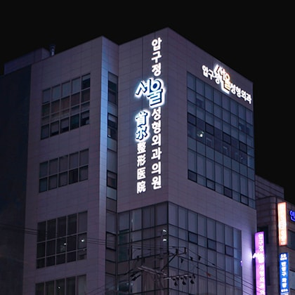 Apgujeong Seoul Plastic Surgery