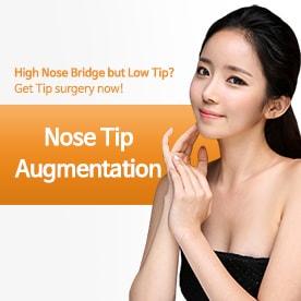Nose Tip Augmentation