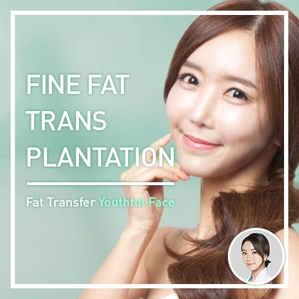 FINE FAT TRANSPLANTATION